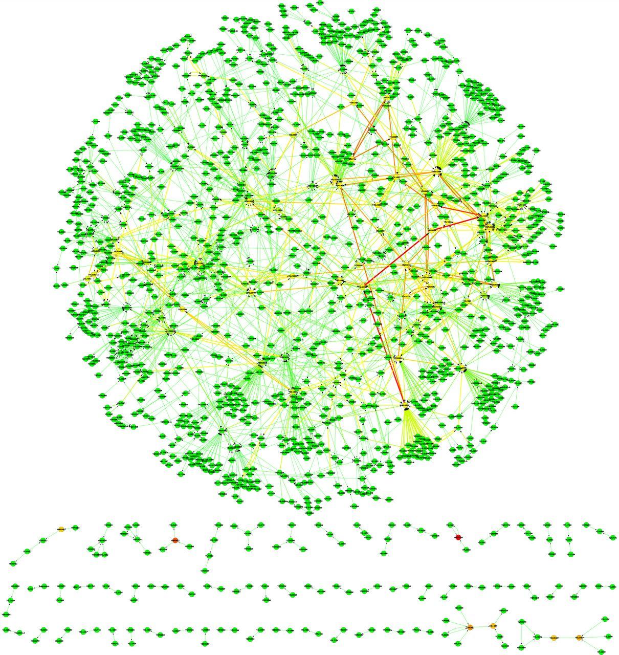 A genome wide dosage suppressor network reveals genetic