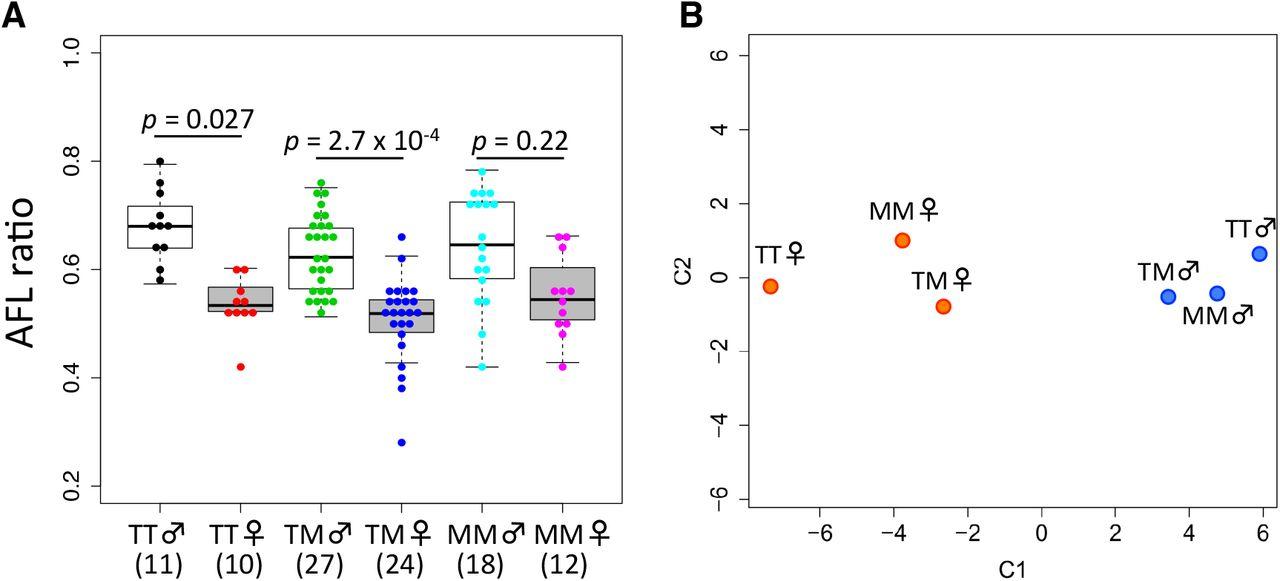 Natural Allelic Variations of Xenobiotic Enzymes Pleiotropically