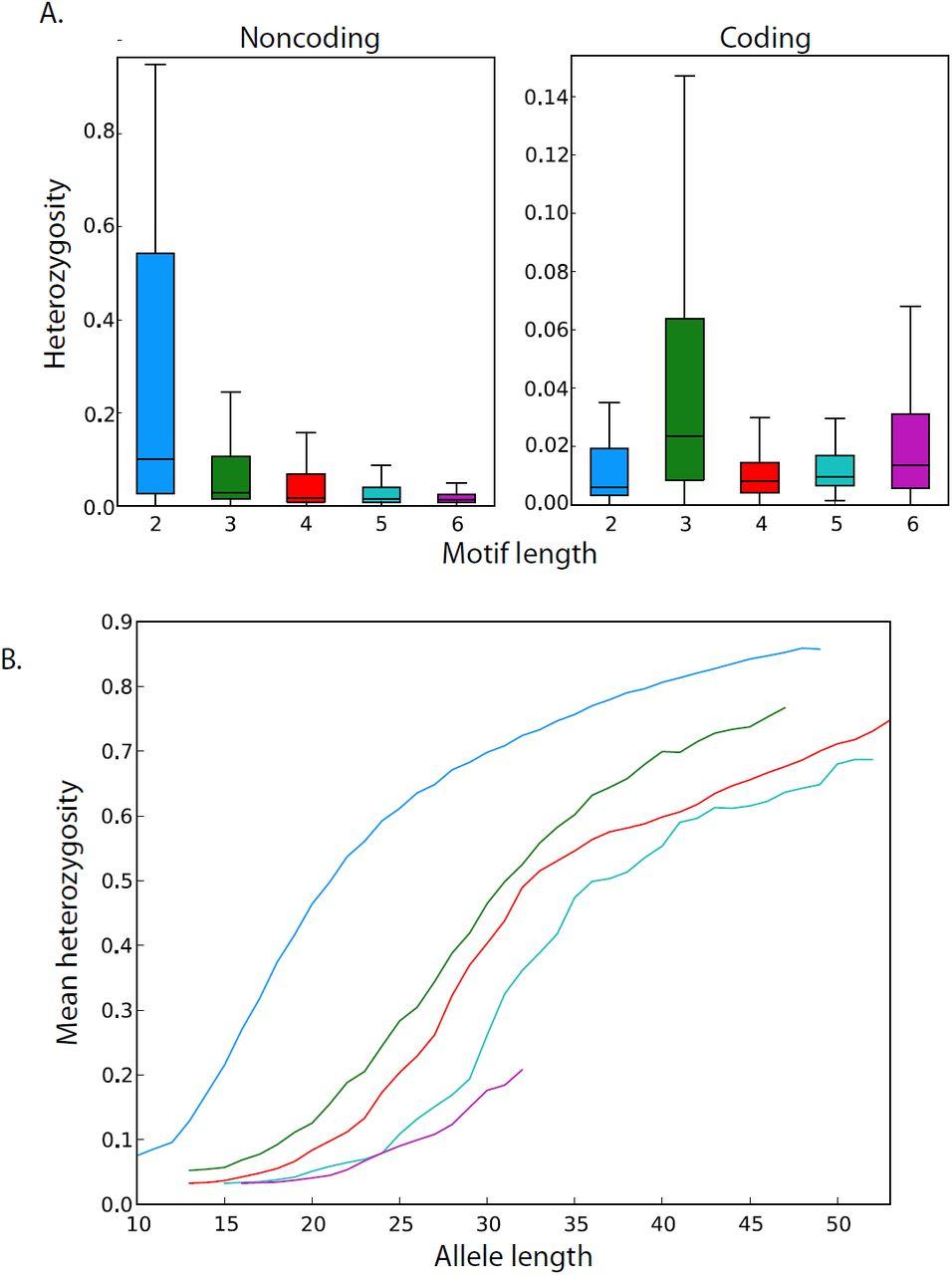 The Landscape of Human STR Variation | bioRxiv
