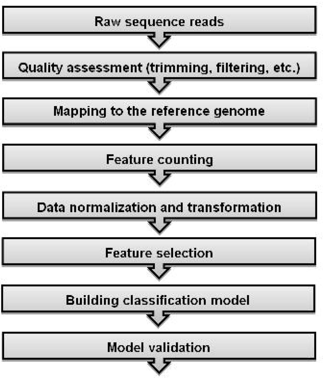 Classification of RNA-Seq Data via Bagging Support Vector Machines