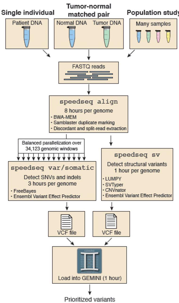 SpeedSeq: Ultra-fast personal genome analysis and interpretation