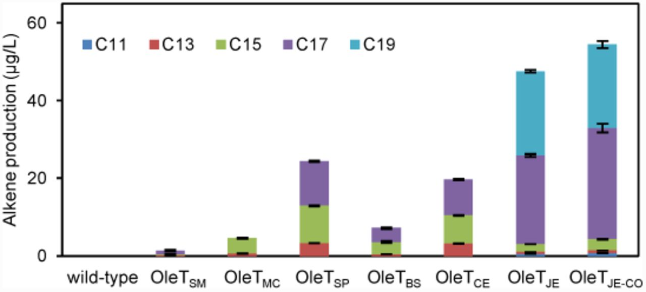 Combinatorial metabolic engineering of Saccharomyces cerevisiae for