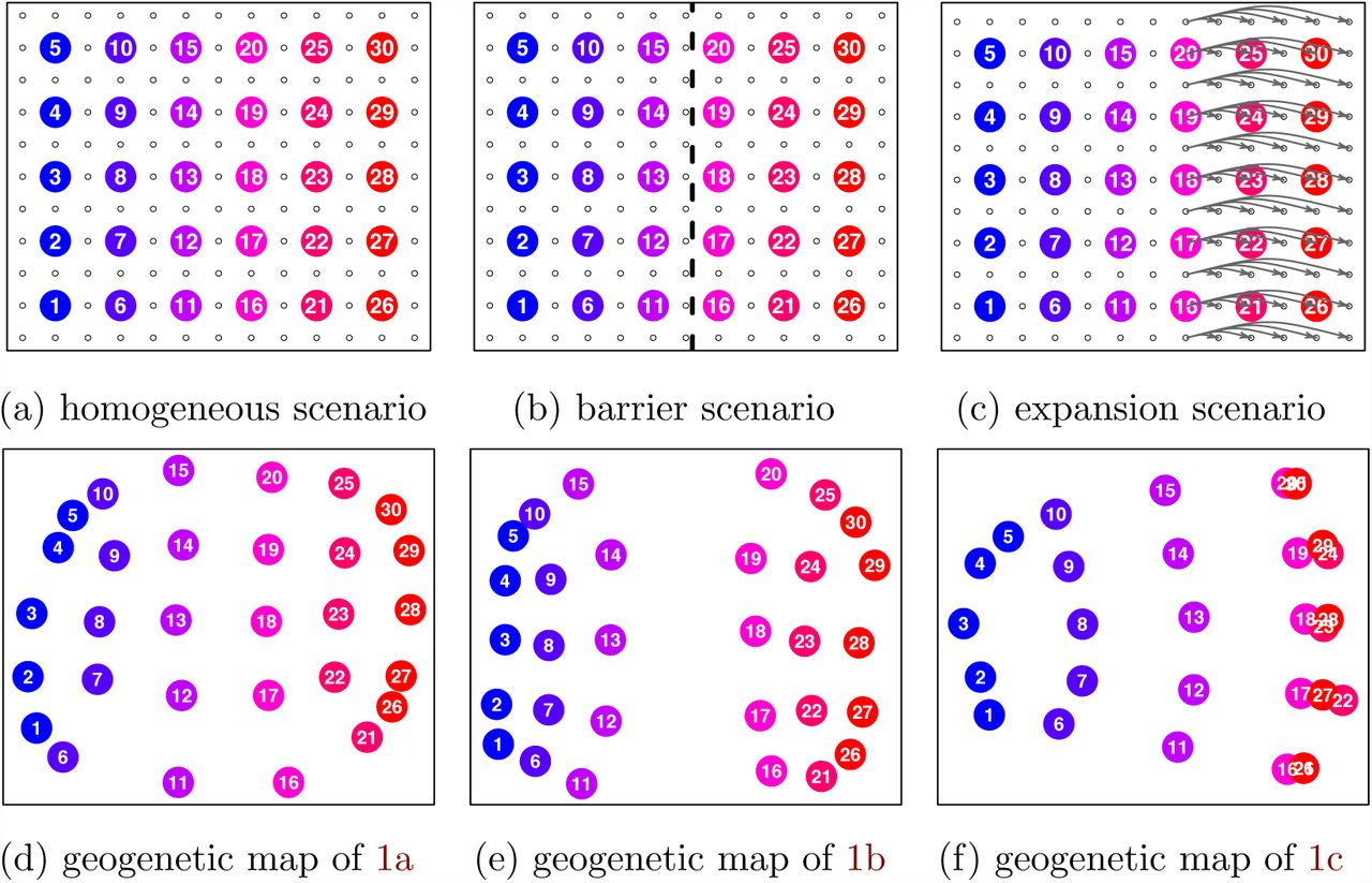 A Spatial Framework for Understanding Population Structure and
