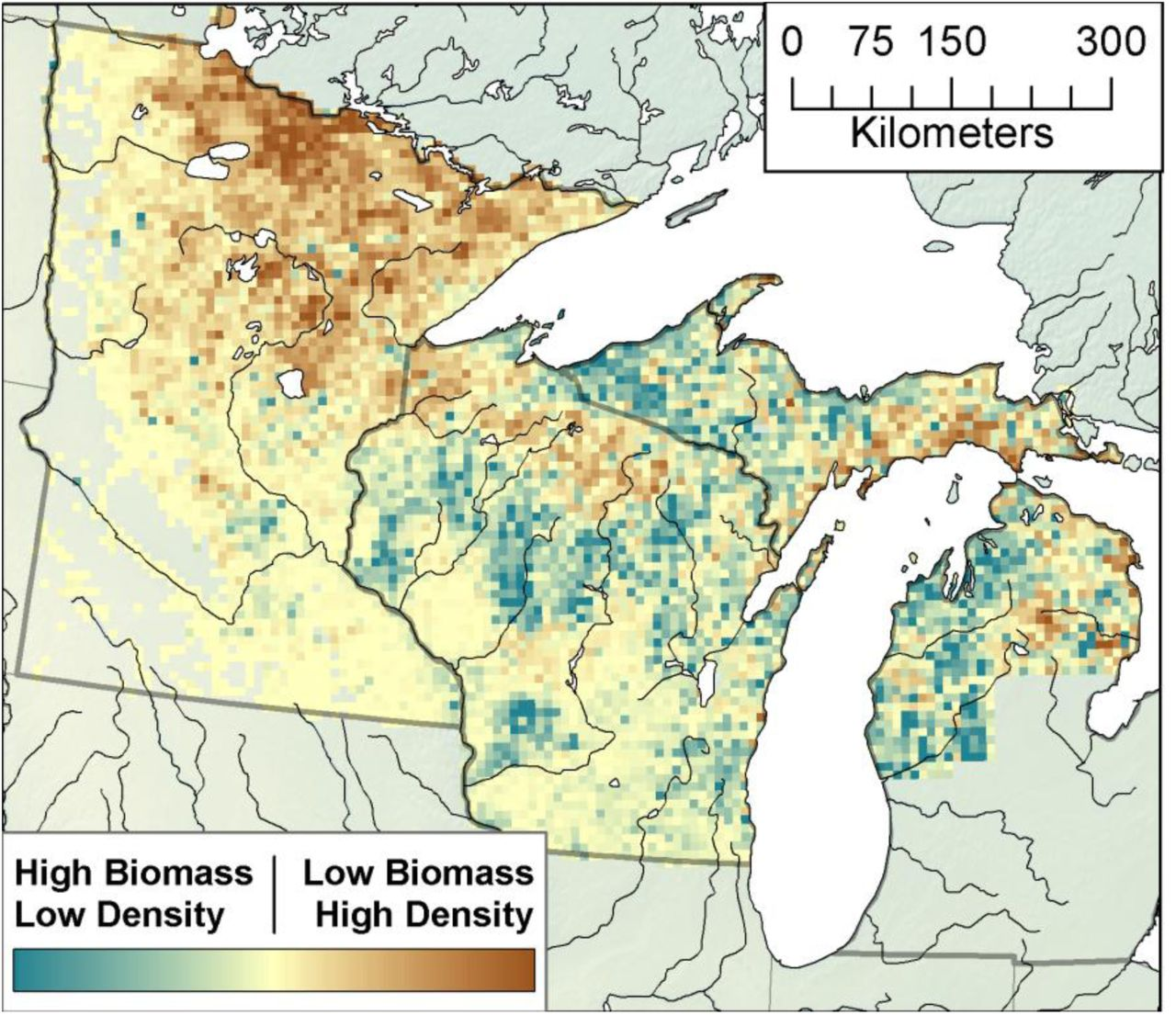 Changes in Forest Composition, Stem Density, and Biomass from the