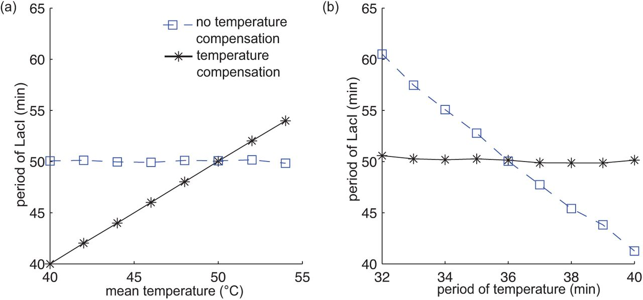 The effects of time-varying temperature on delays in genetic