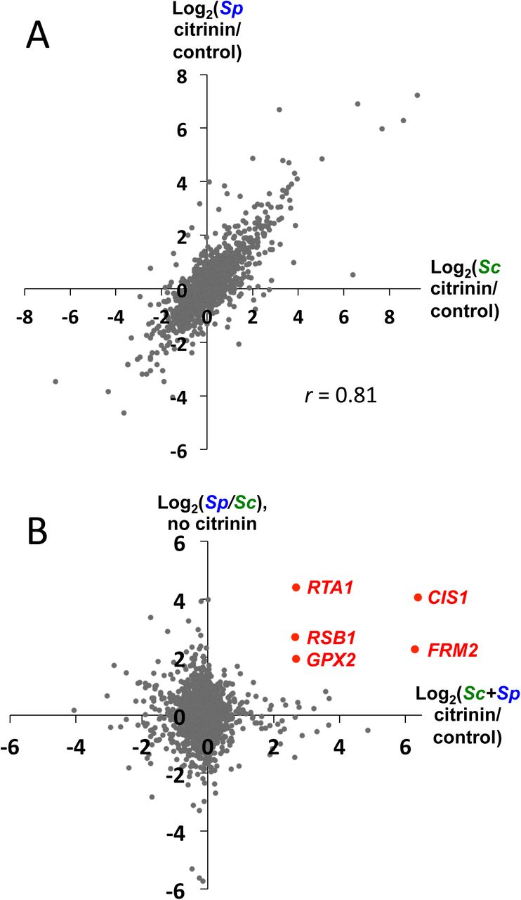 Dissecting the genetic basis of a complex cis-regulatory