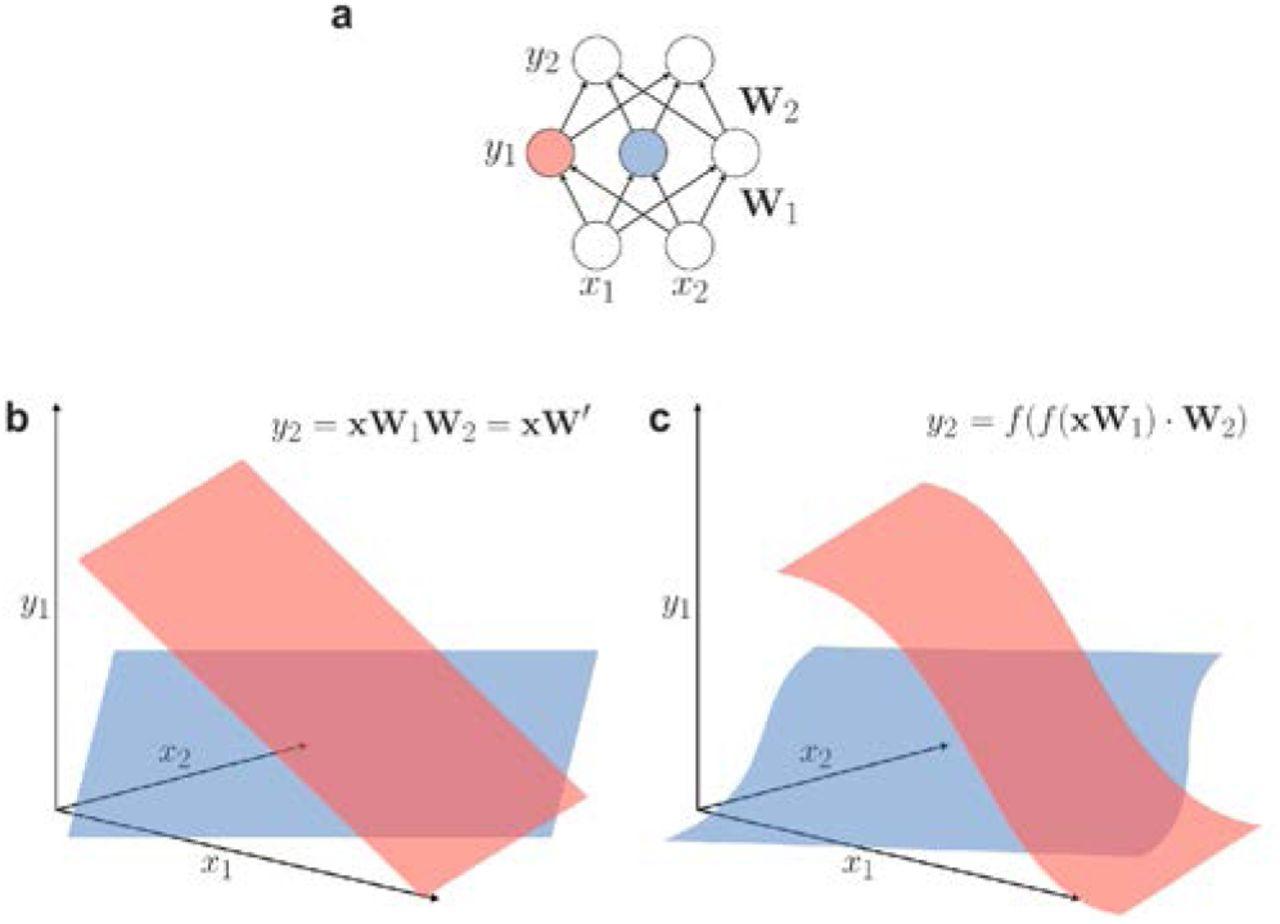 Deep neural networks: a new framework for modelling