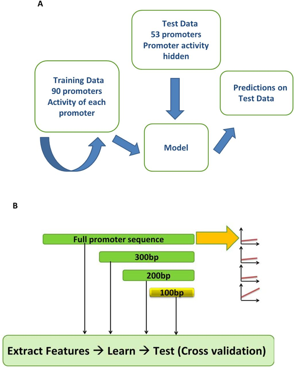 Prediction of Fine-tuned Promoter Activity from DNA Sequence