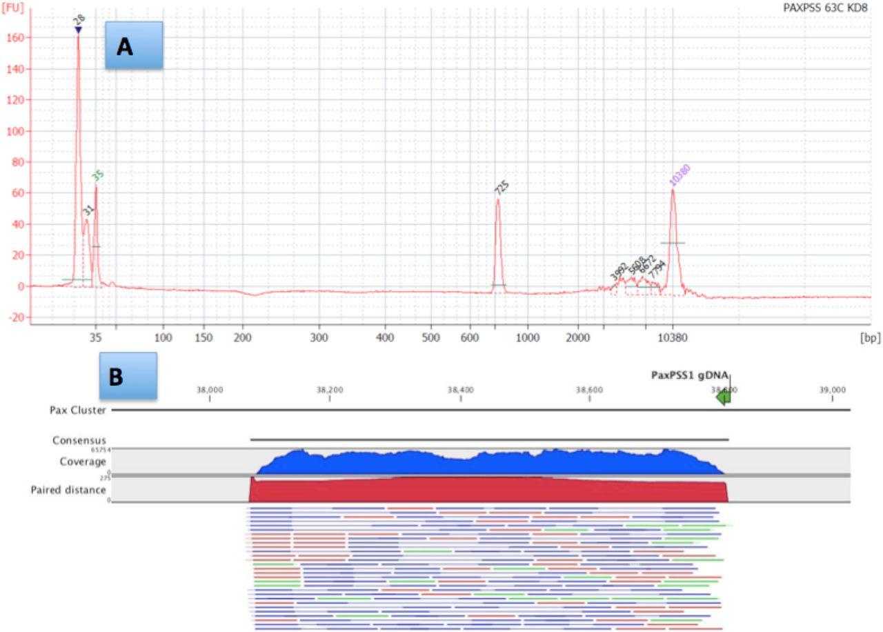 Cannabis microbiome sequencing reveals several mycotoxic