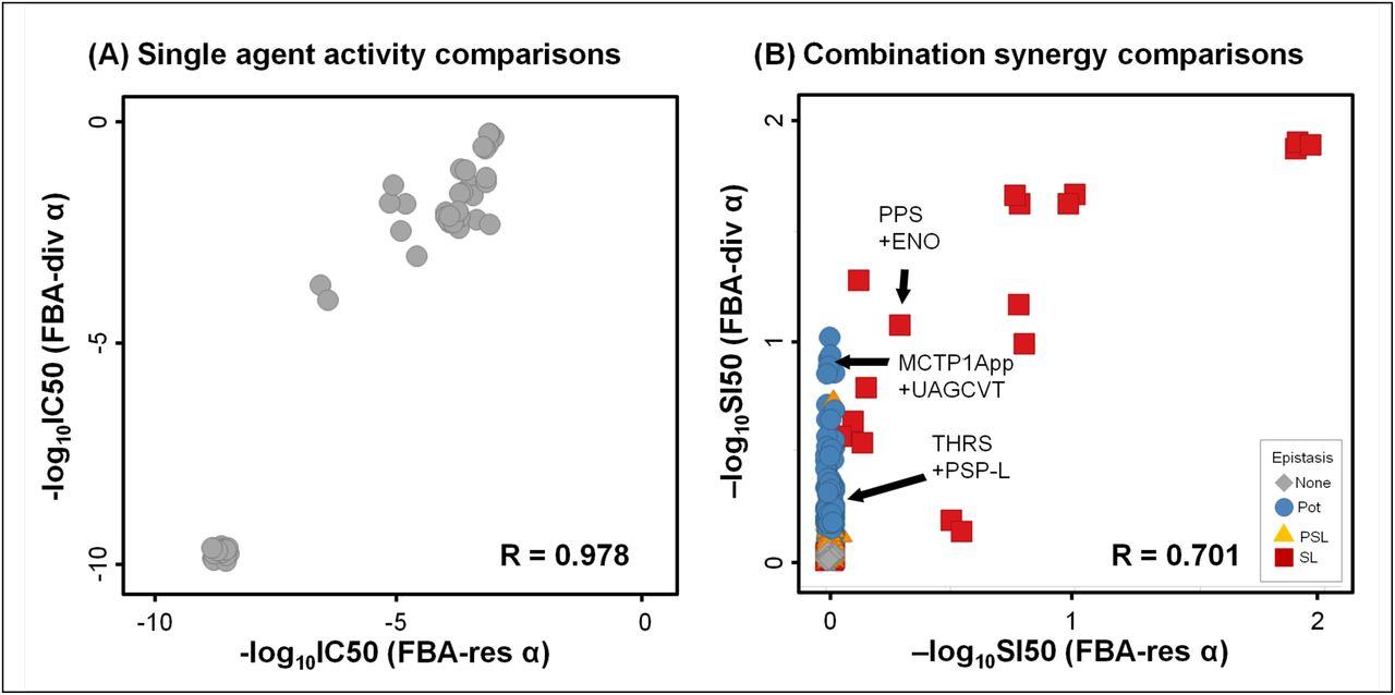 Simulating serial-target antibacterial drug synergies using