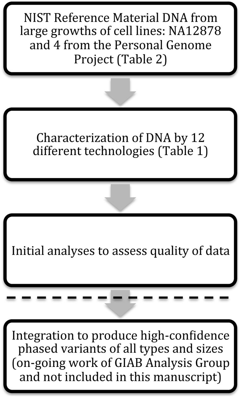 Extensive sequencing of seven human genomes to characterize