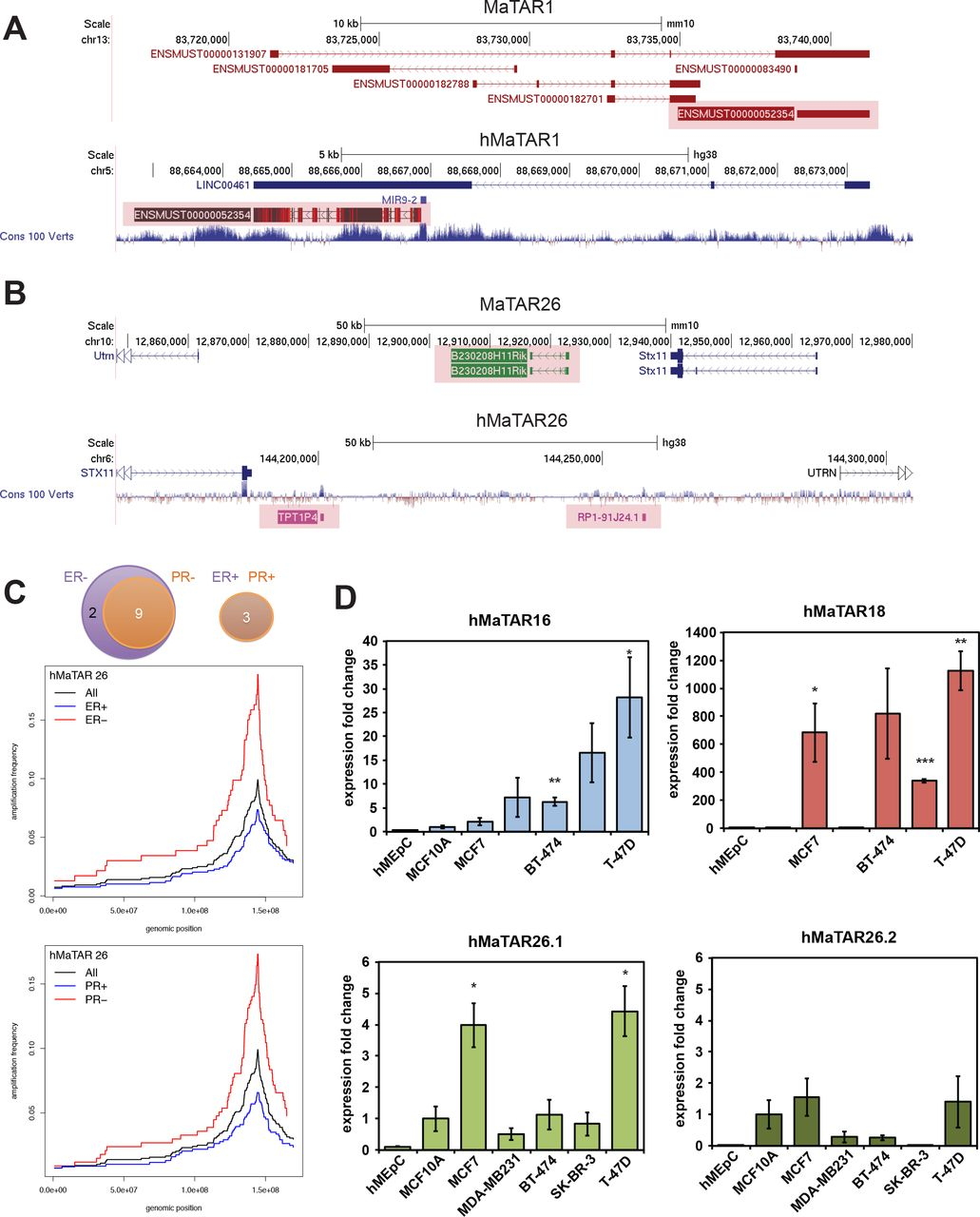 Identification and characterization of long non-coding RNAs