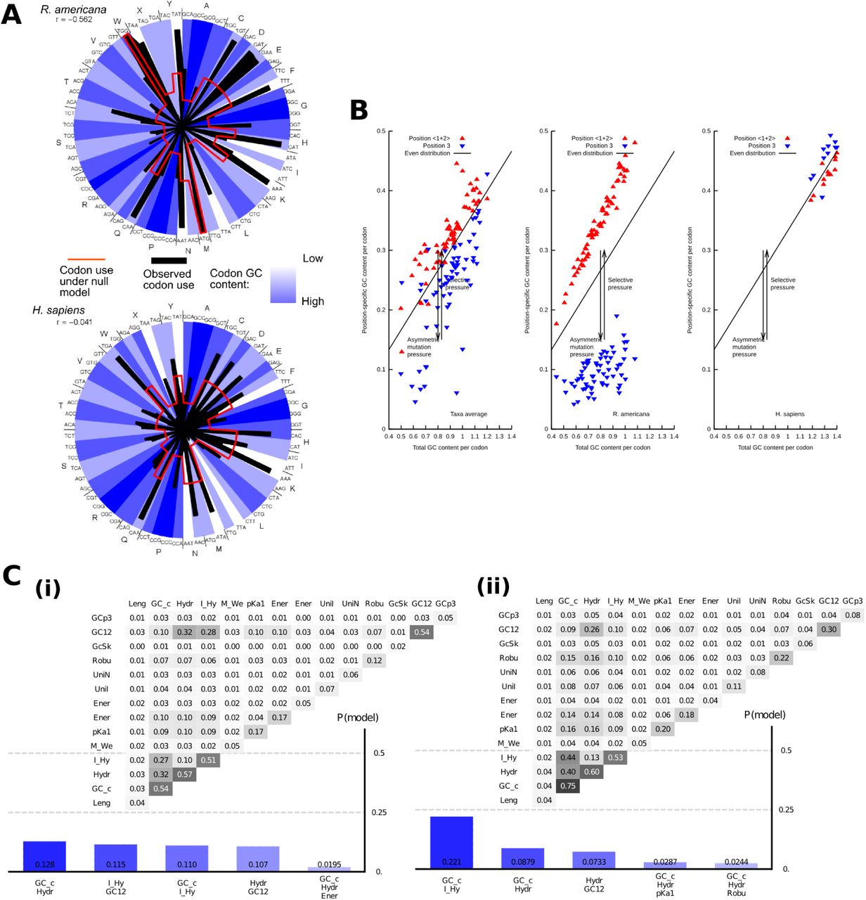 Evolutionary inference across eukaryotes identifies specific