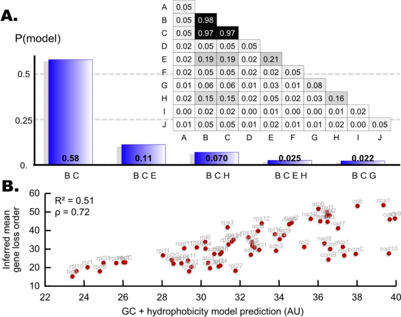 Evolutionary inference across eukaryotes identifies multiple