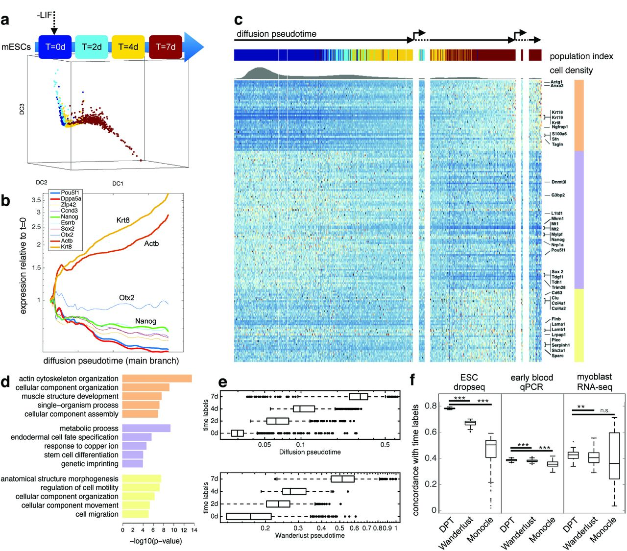 Diffusion pseudotime robustly reconstructs lineage branching | bioRxiv