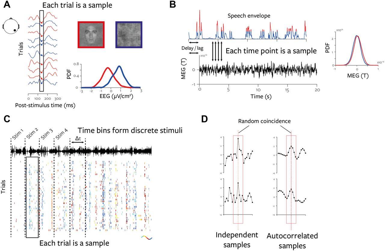 A statistical framework for neuroimaging data analysis based