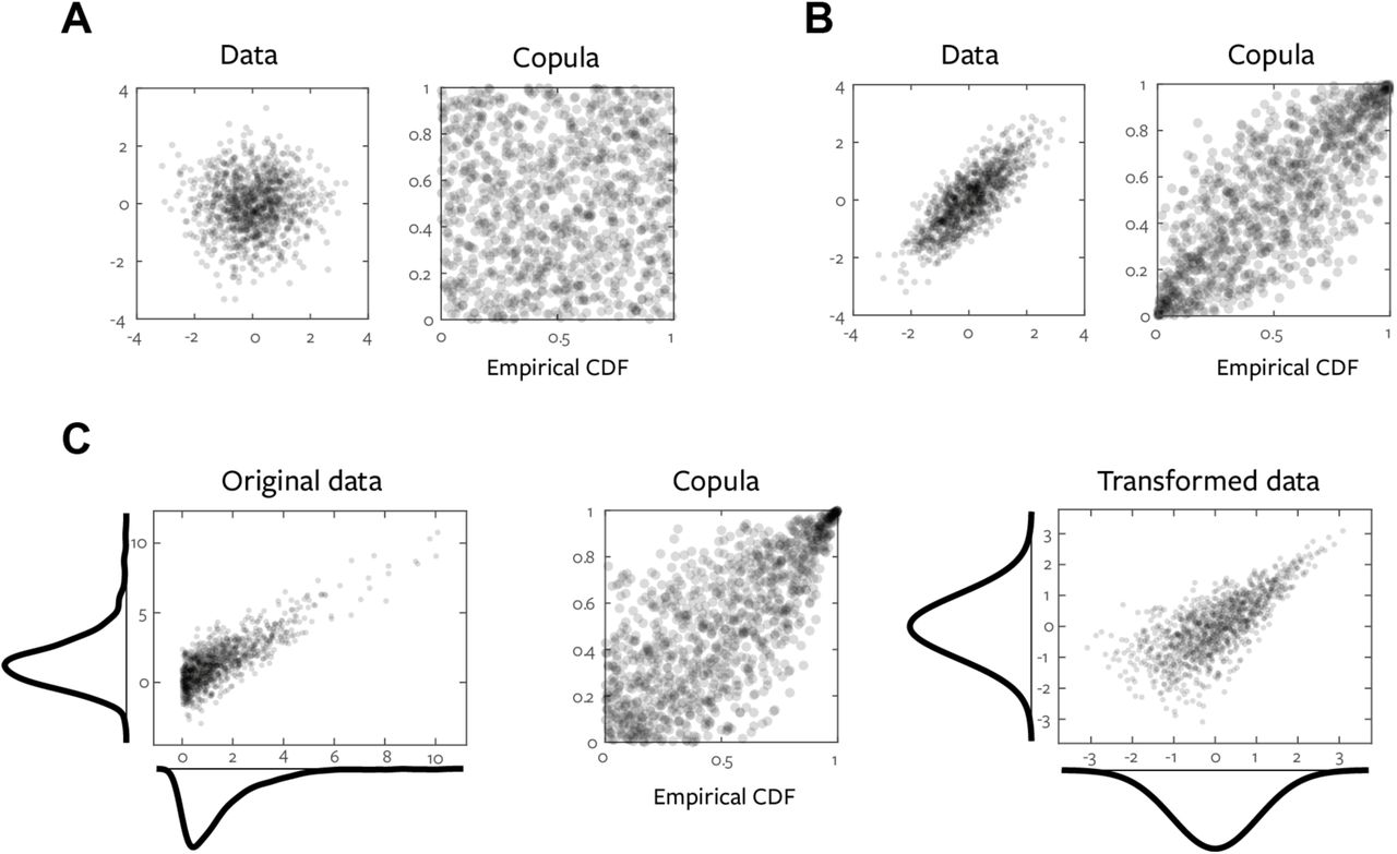A statistical framework for neuroimaging data analysis based on