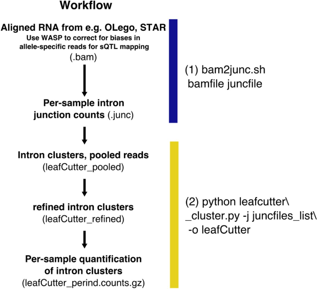 LeafCutter: Annotation-free quantification of RNA splicing | bioRxiv