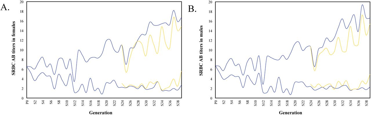 Wide genome involvement in response to long-term selection for