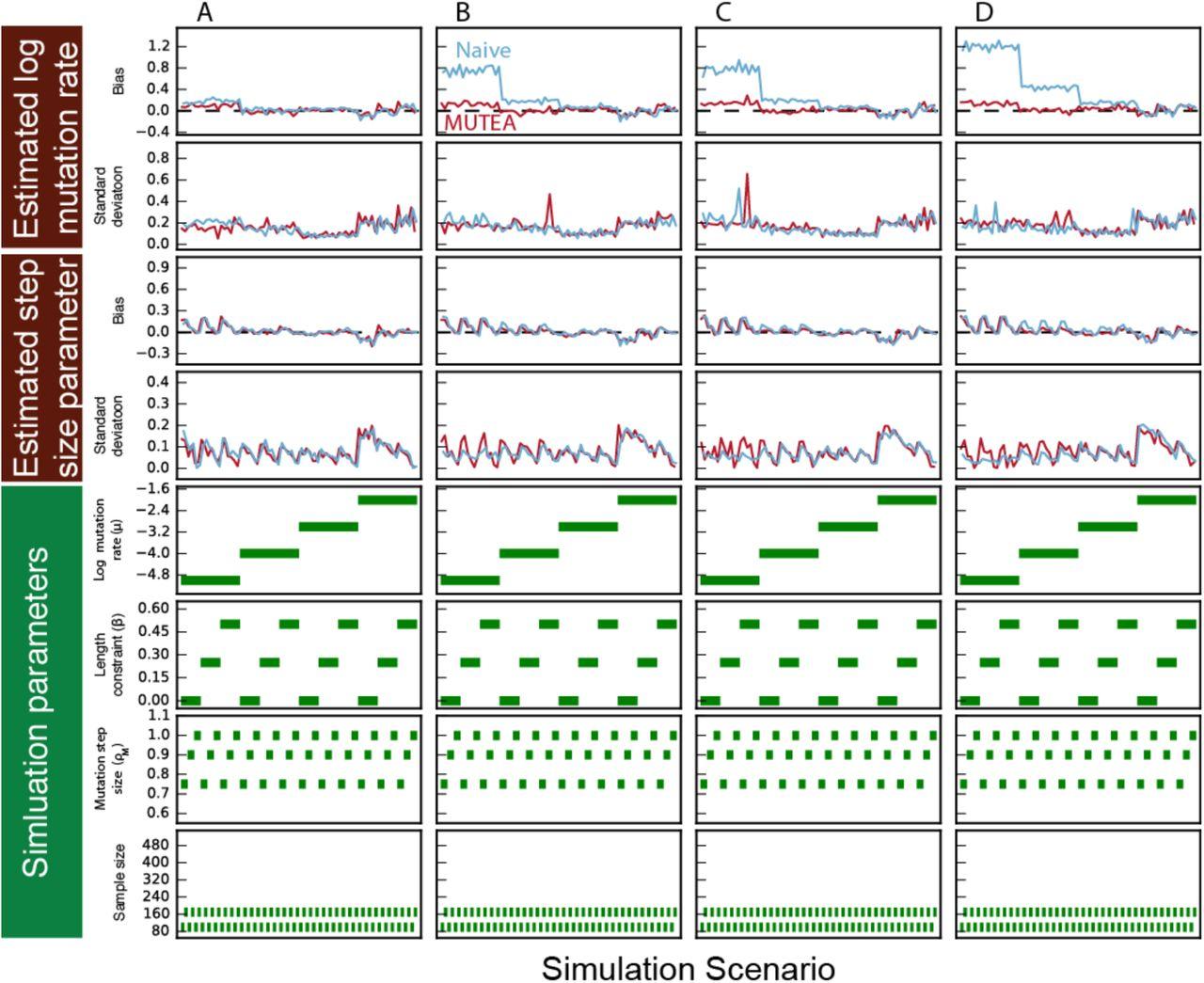 Population-Scale Sequencing Data Enables Precise Estimates of Y-STR