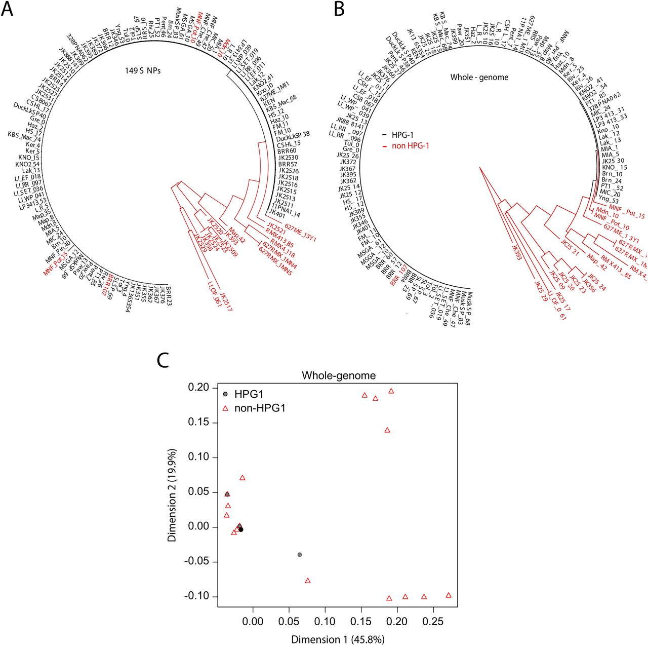 The rate and effect of de novo mutations in natural