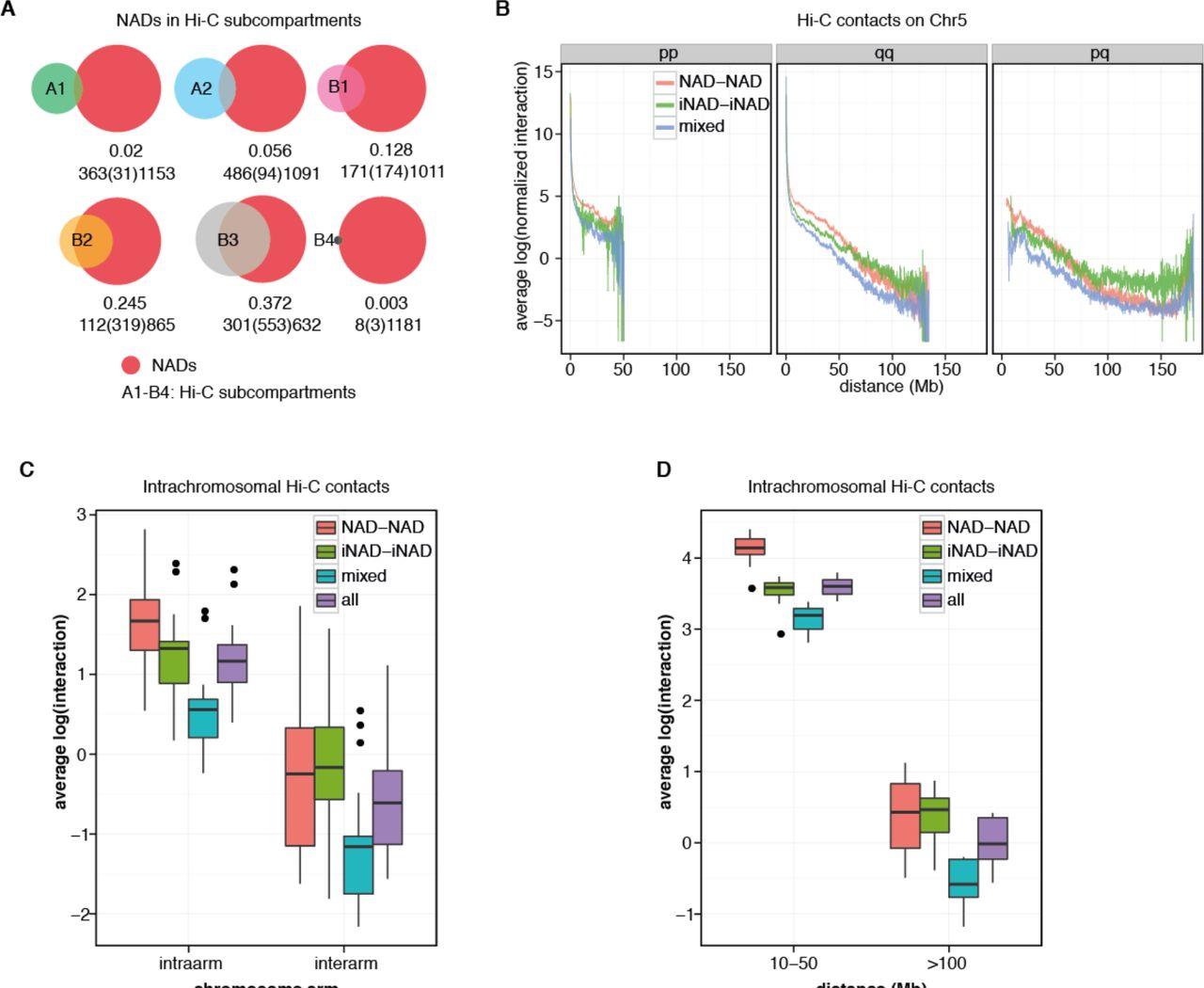 Nucleolus association of chromosomal domains is largely
