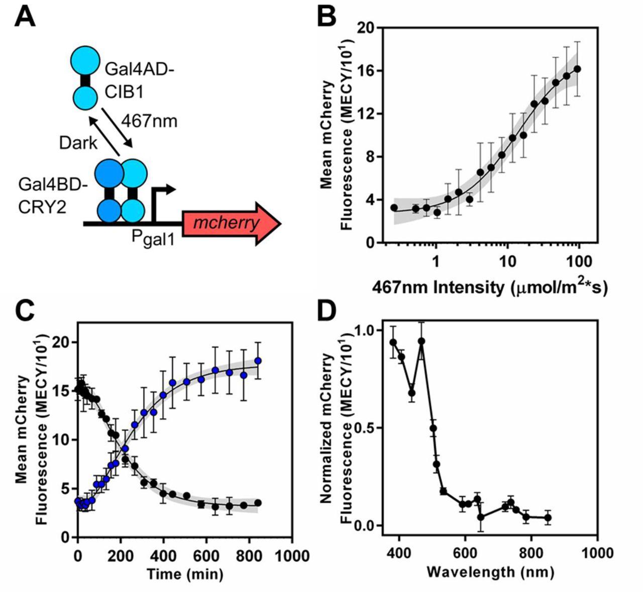 An open-hardware platform for optogenetics and photobiology