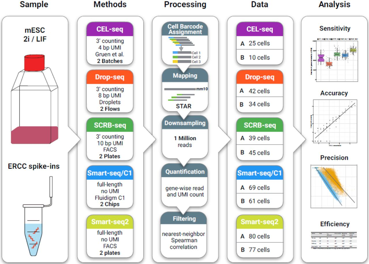 Comparative Analysis of Single-Cell RNA-Sequencing Methods | bioRxiv
