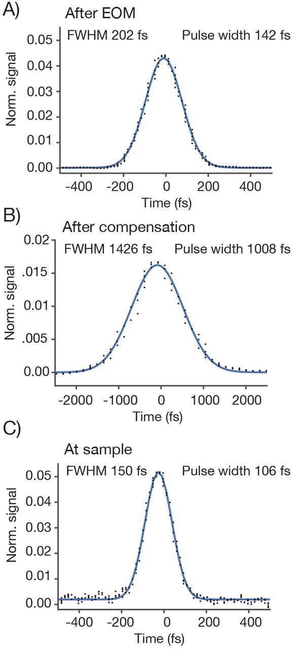 A large field of view two-photon mesoscope with subcellular