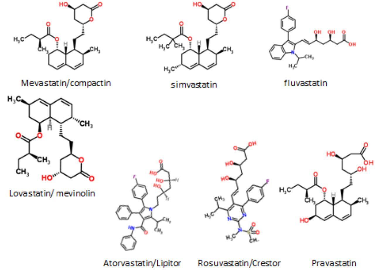 A Dormant Microbial Component in the Development of Pre-Eclampsia1