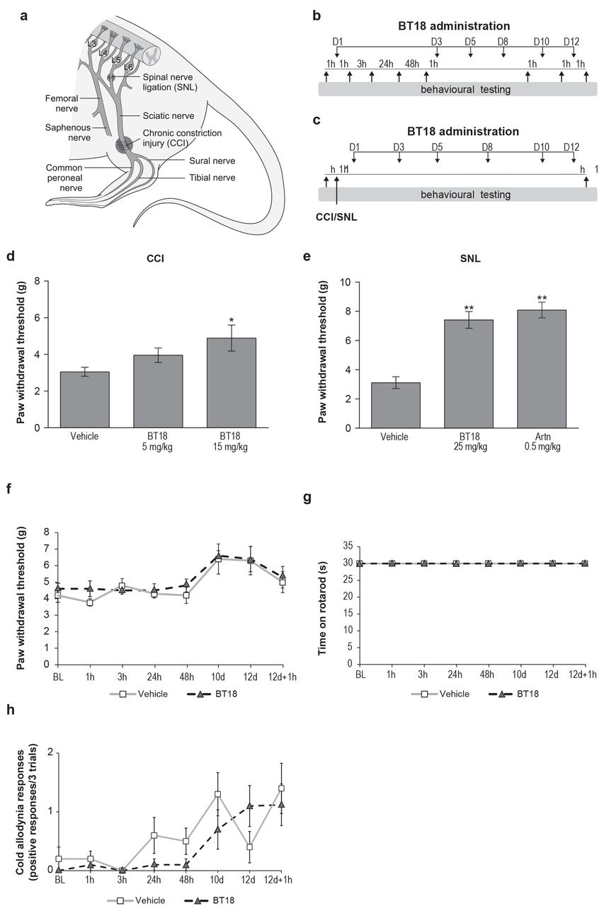 Novel agonist of GDNF family ligand receptor RET for the treatment