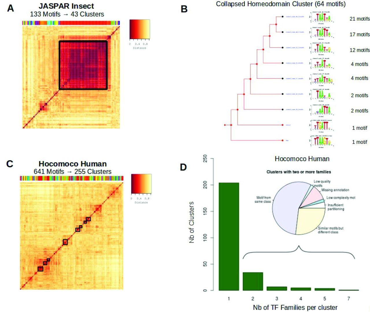 RSAT matrix-clustering: dynamic exploration and redundancy