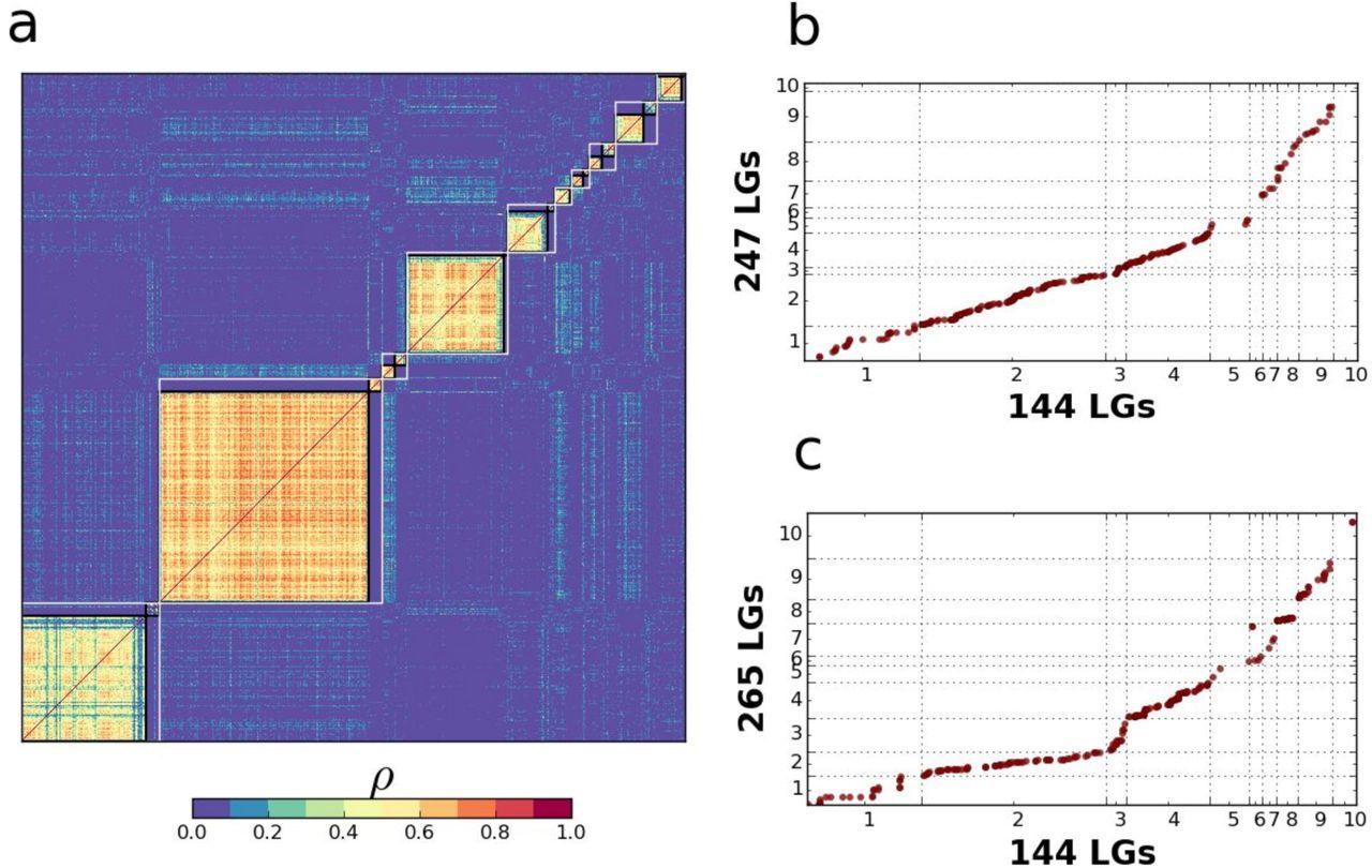 Non-Mendelian inheritance of SNP markers reveals extensive