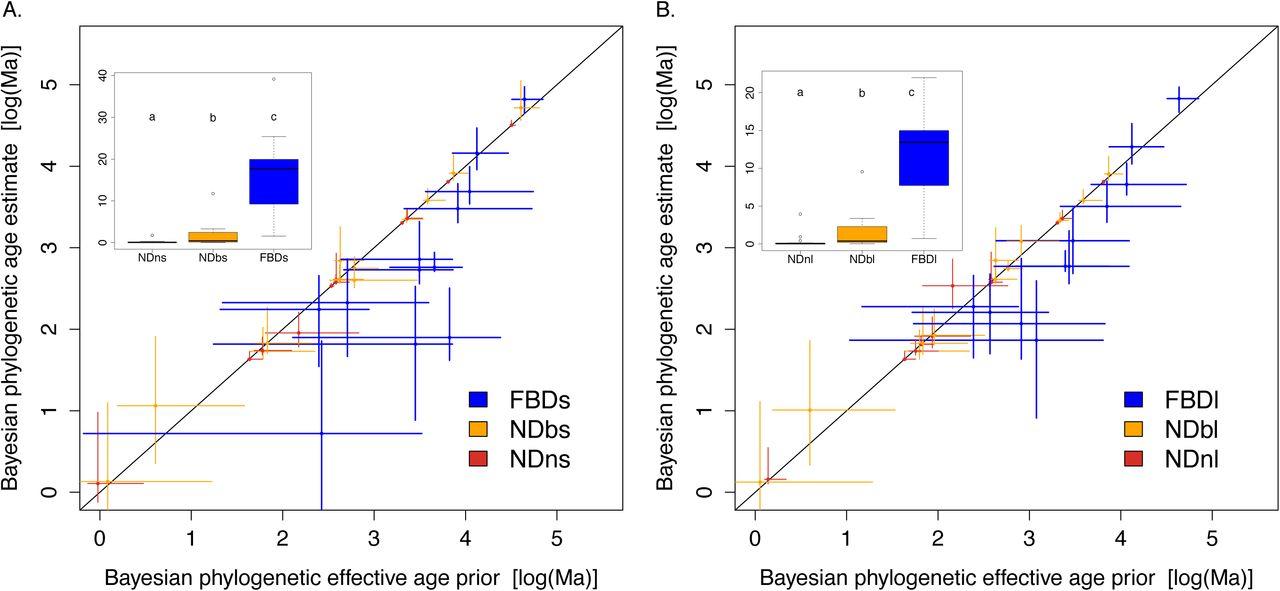 node dating phylogeny