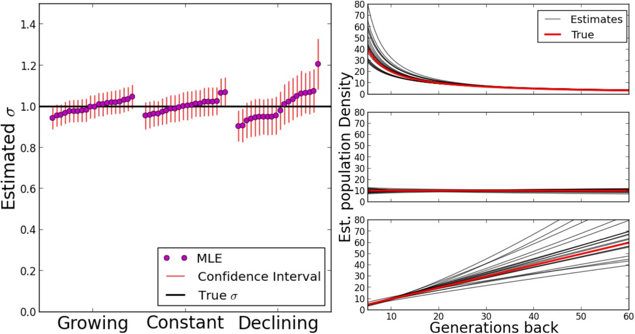 Inferring recent demography from isolation by distance of