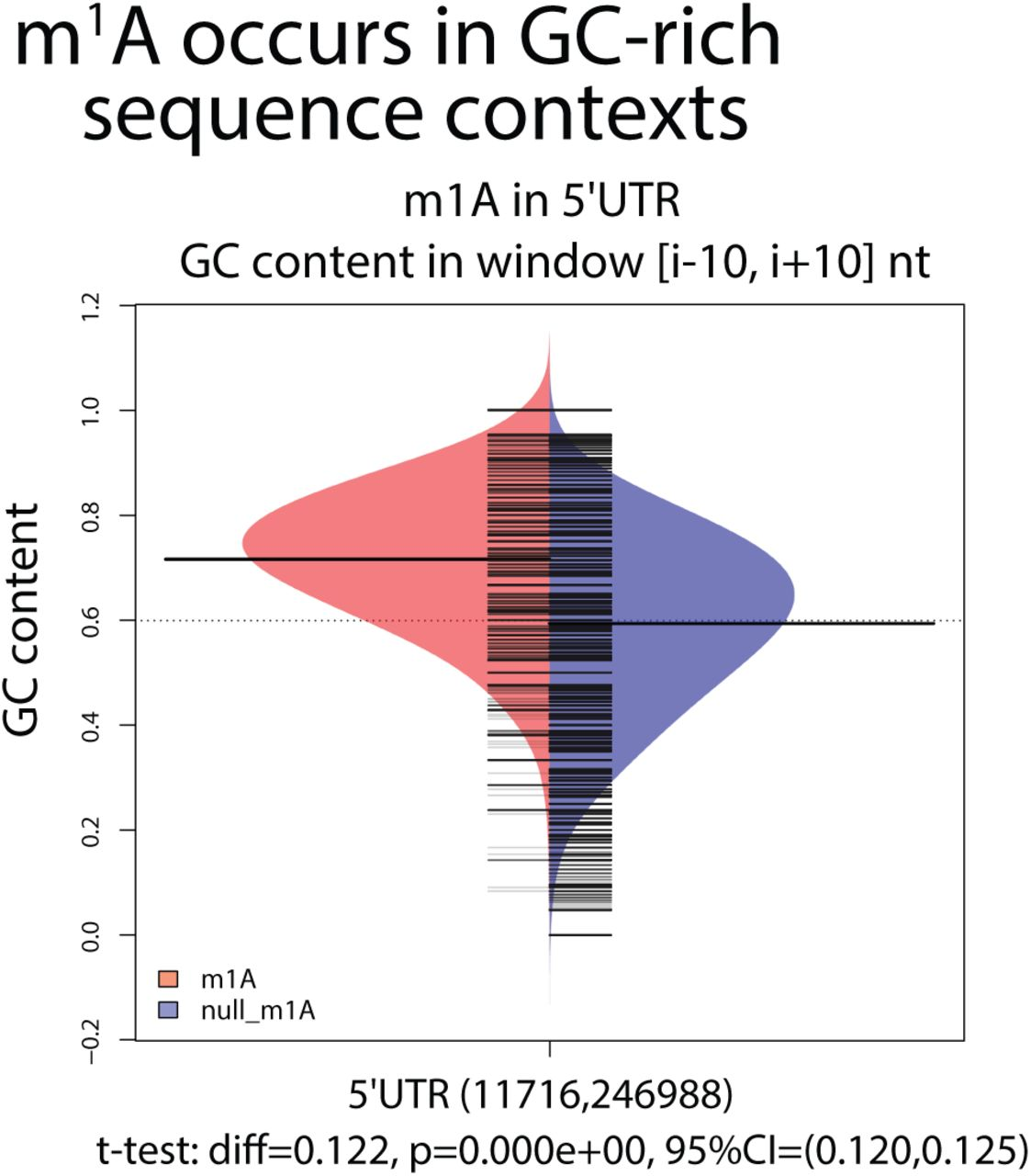 RNAModR: Functional analysis of mRNA modifications in R