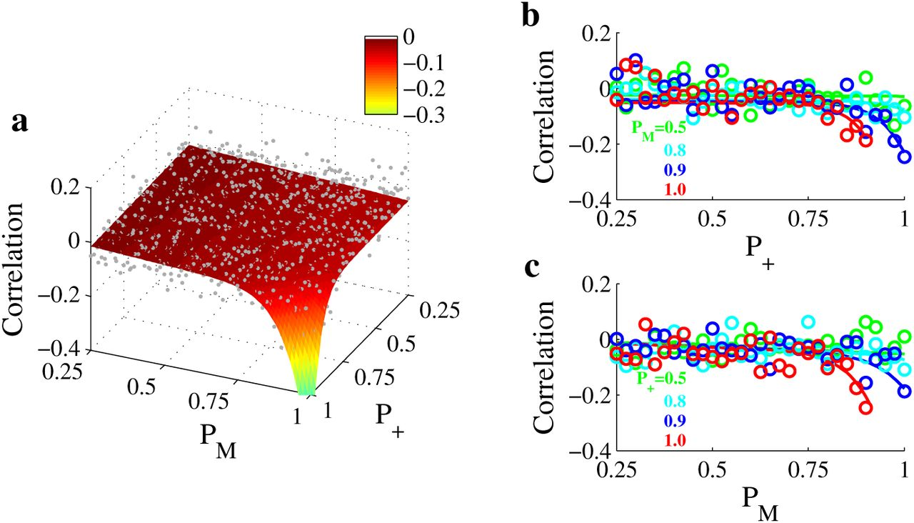 Long-range suppressive influences from the visual surround