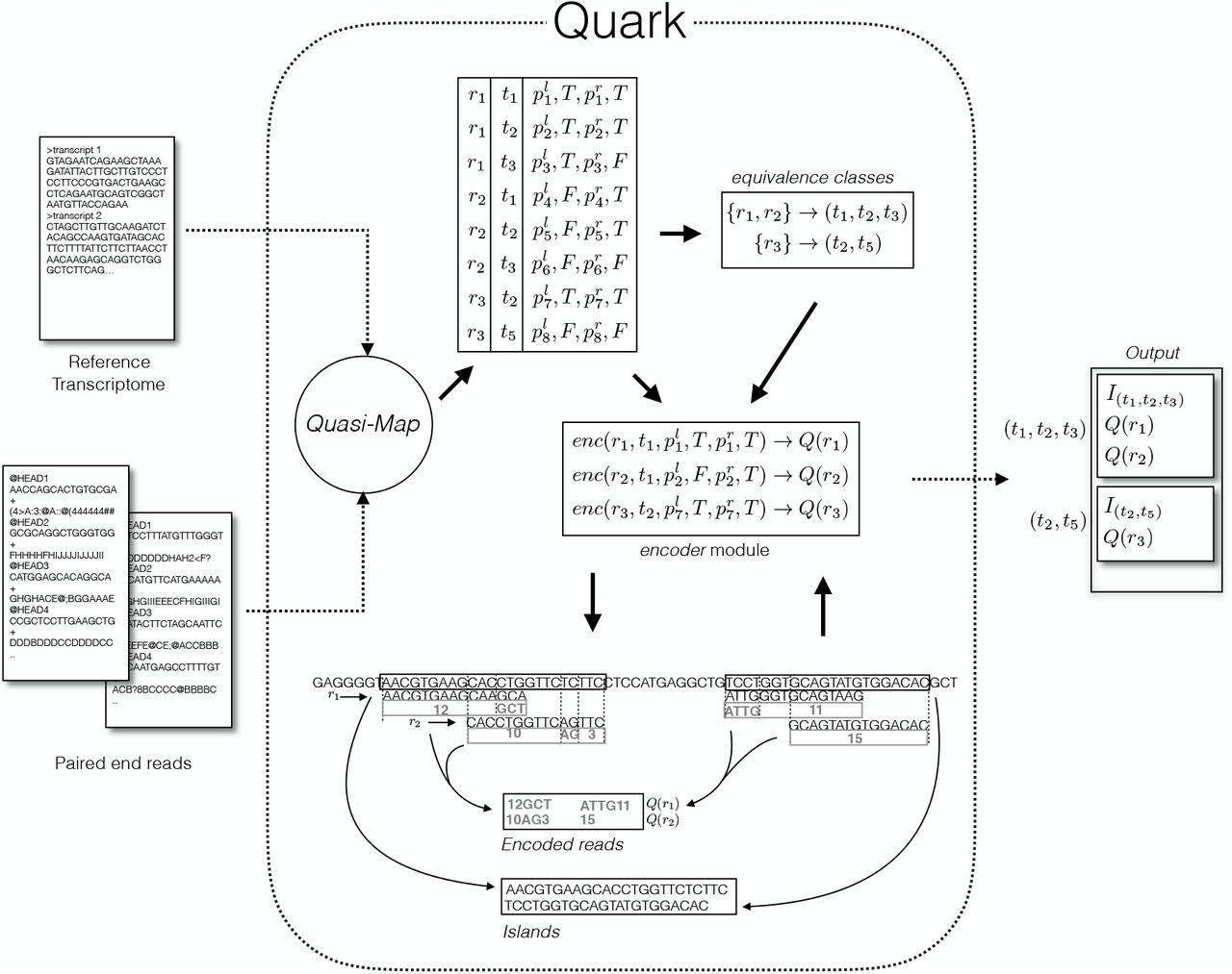 Quark enables semi-reference-based compression of RNA-seq data | bioRxiv