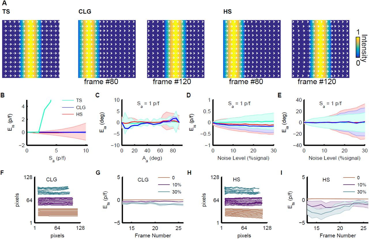 Optical-flow analysis toolbox for characterization of spatiotemporal