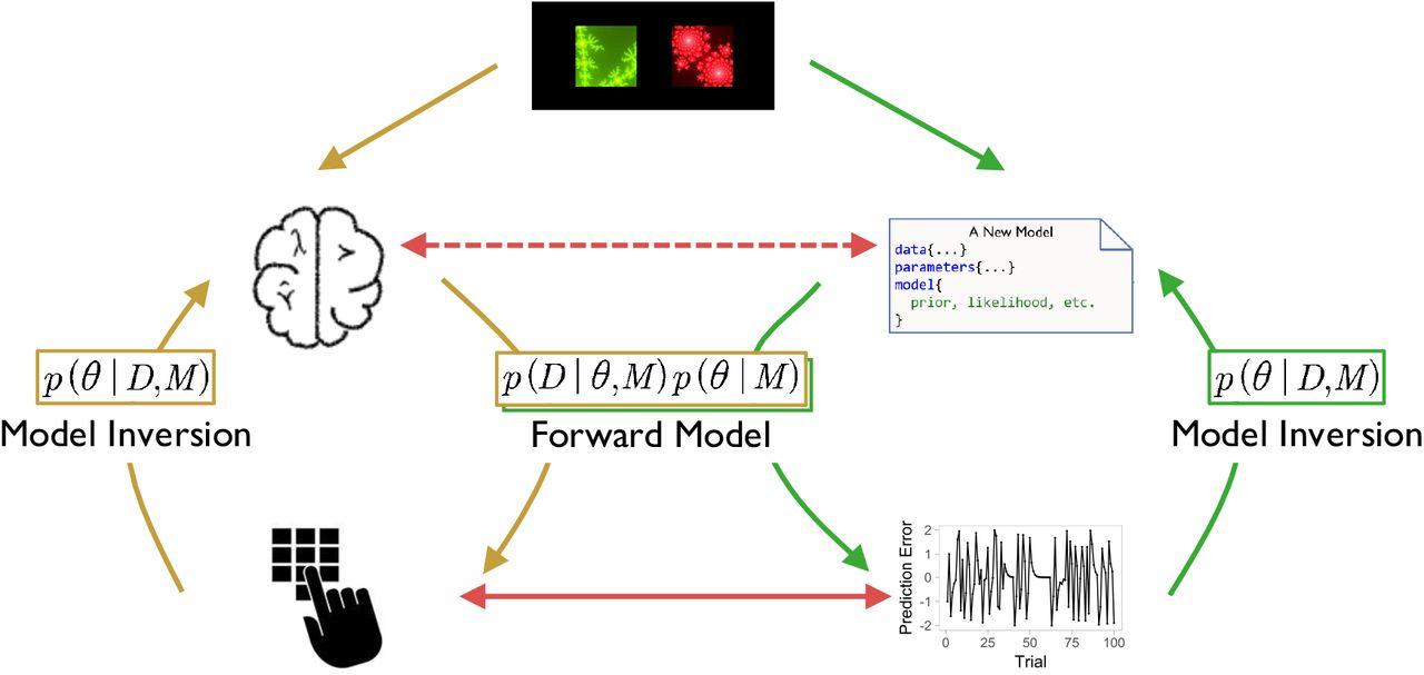 Revealing neuro-computational mechanisms of reinforcement learning