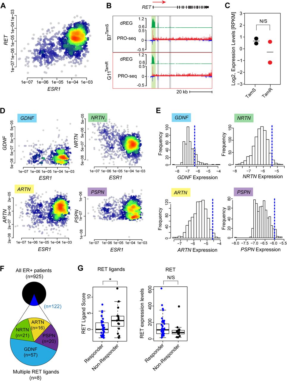 RET Ligands Mediate Endocrine Sensitivity via a Bi-stable Feedback