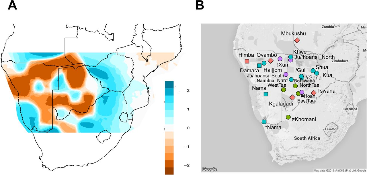 Fine-scale human population structure in southern Africa