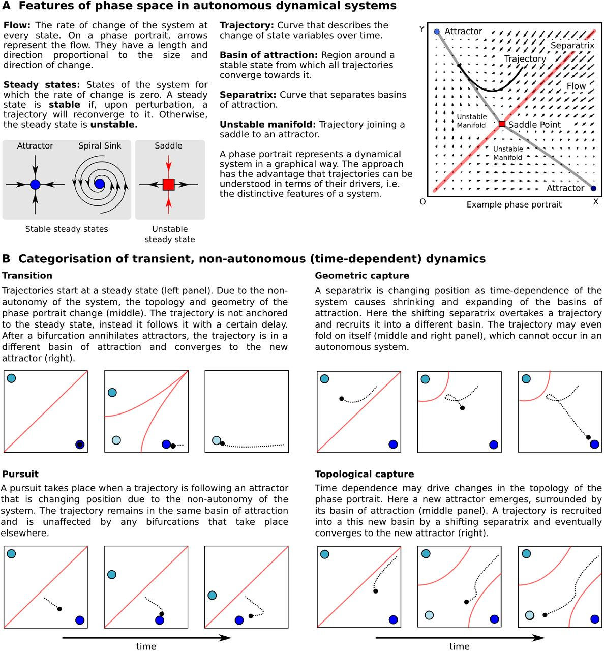 Dynamic Maternal Gradients Control Timing and Shift-Rates for