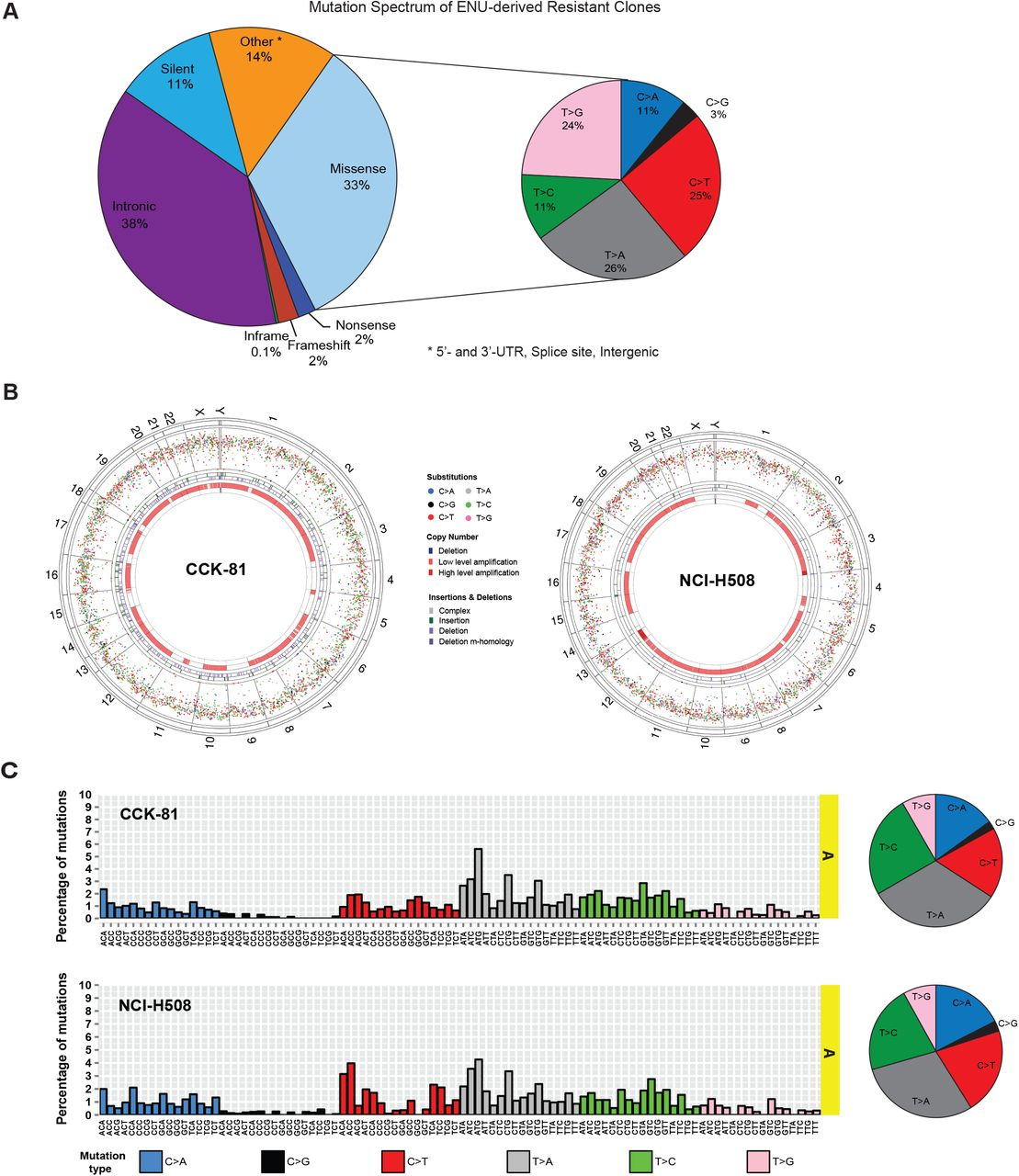 Genome-wide chemical mutagenesis screens allow unbiased saturation
