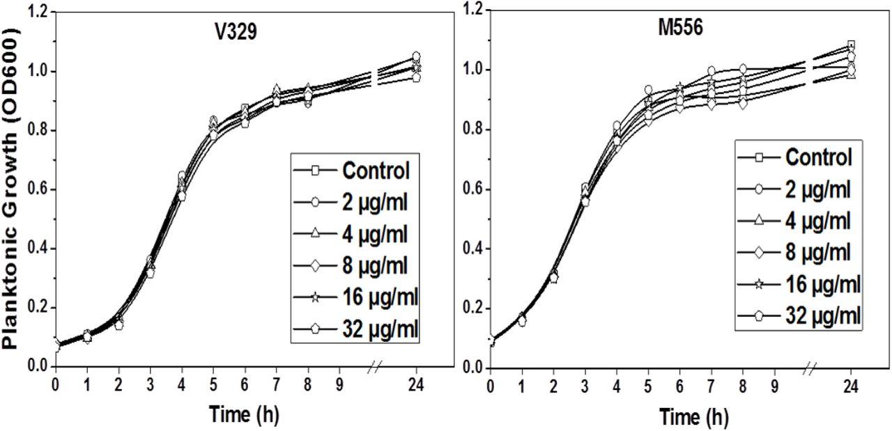 Staphylococcus aureus Biofilm Removal by Targeting Biofilm
