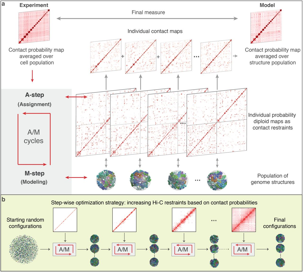 PGS: a dynamic and automated population-based genome