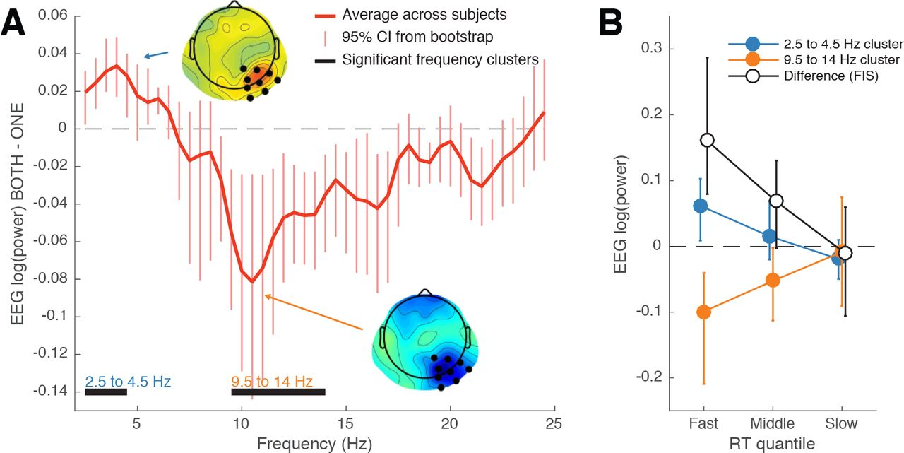 The rhythm of attentional stimulus selection during visual