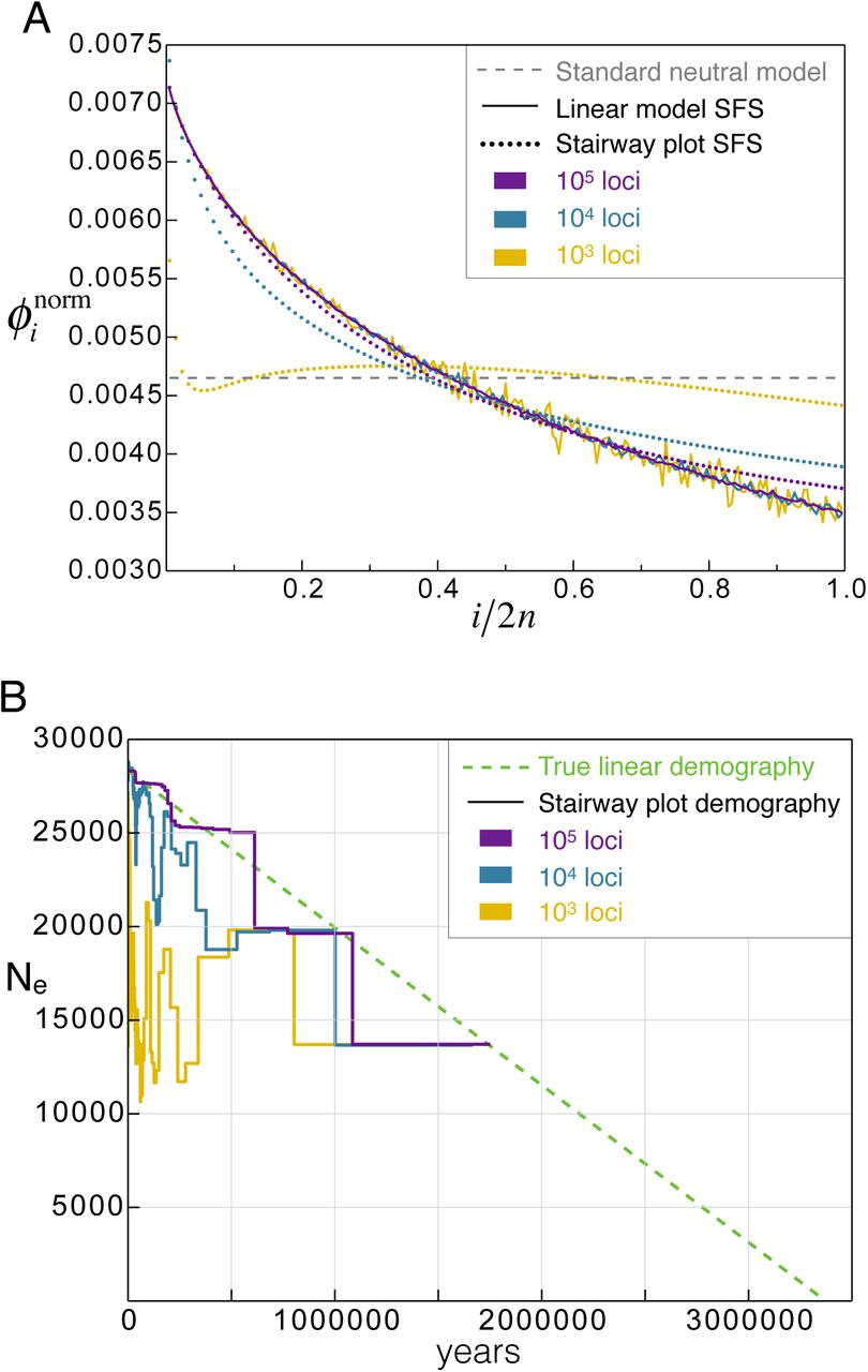Accuracy of demographic inferences from site frequency