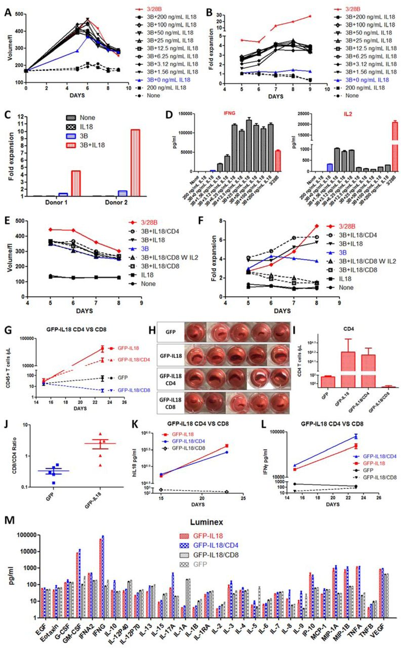 CAR T Cells Secreting IL18 Augment Antitumor Immunity and Increase T