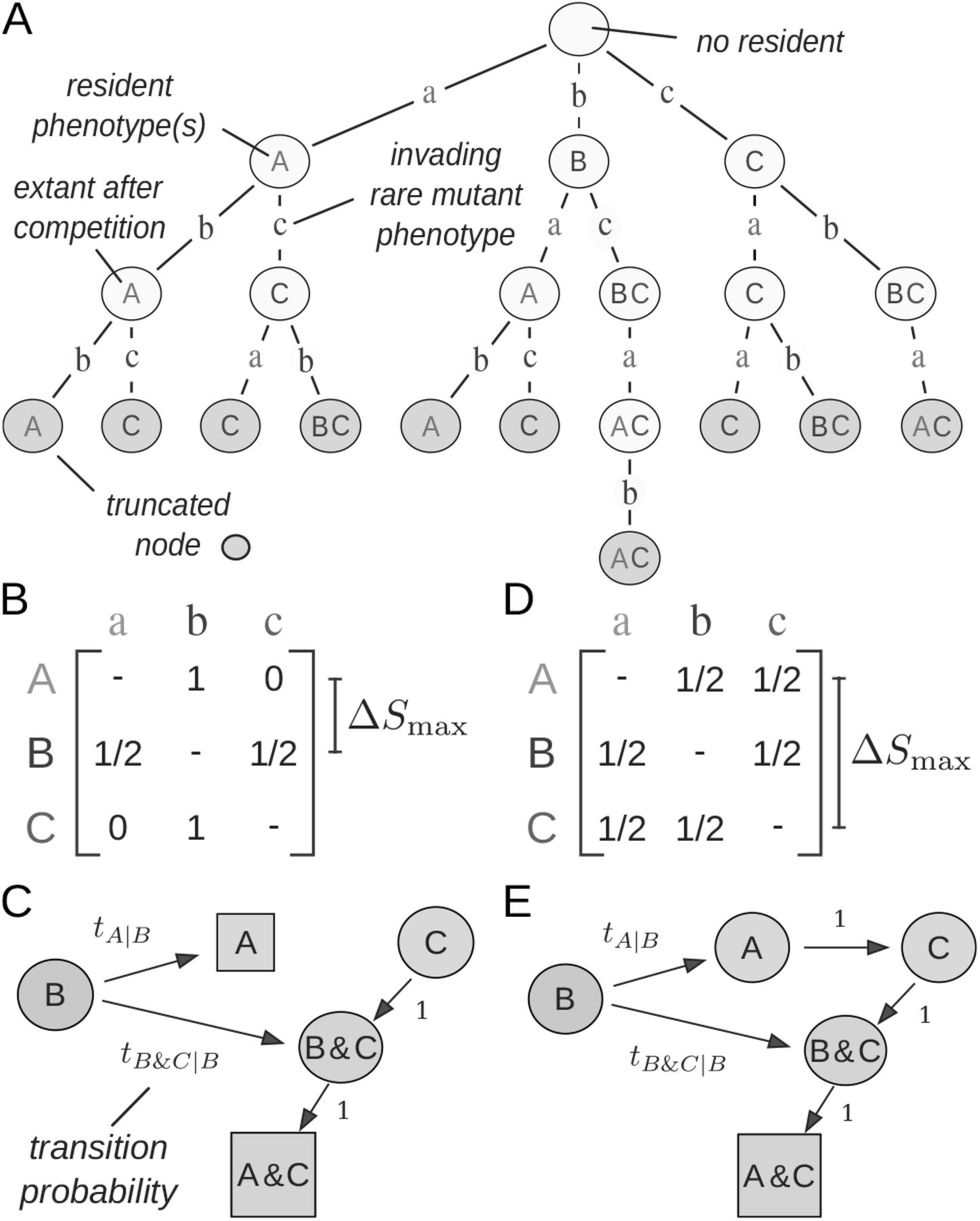 Predicting metabolic adaptation from networks of mutational paths